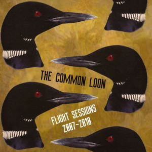 The Common Loon Flight sessions